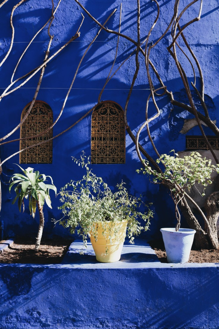 marrakech - jardin majorelle - nickyinsideout - nicole ballardini -