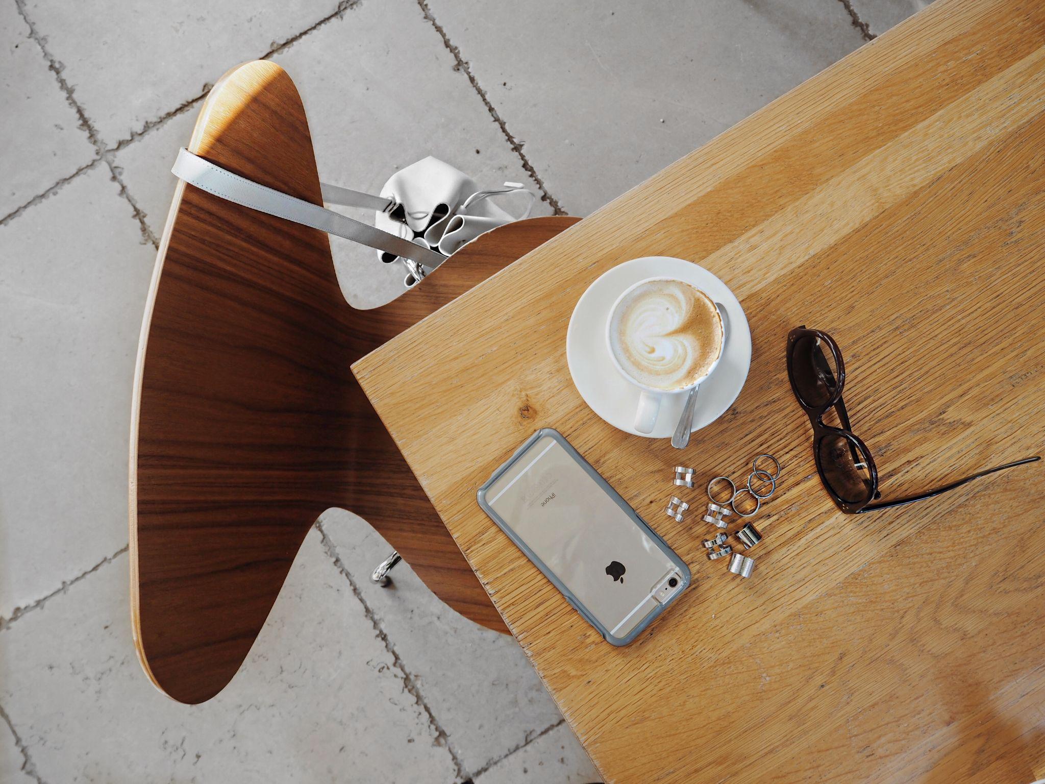 hortus-botanicus-amsterdam-botanic-garden-silver-rings-phone-case-otterbox-symmetry-clear-lancaster-bag-white-celine-sunglasses-coffee-art-chair-arne-jacobsen
