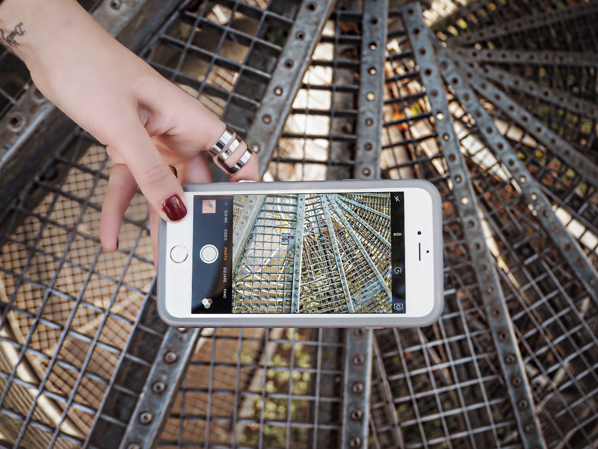 hortus-botanicus-amsterdam-botanic-garden-phone-case-otterbox-symmetry-clear-silver-rings